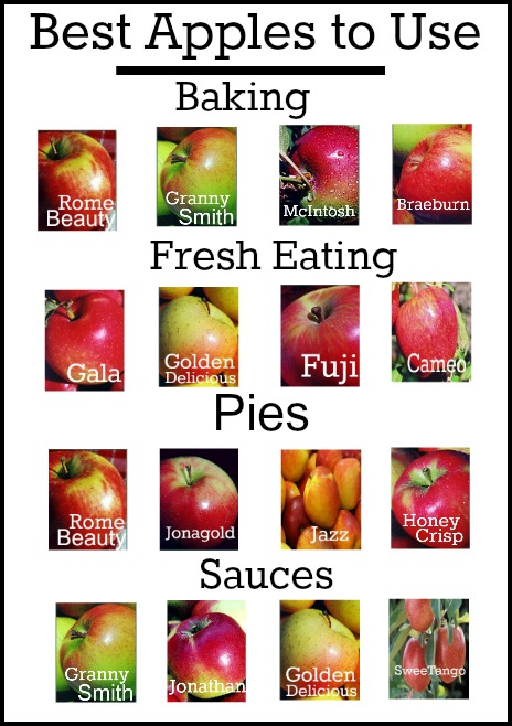 Best  Apples for baking and cooking